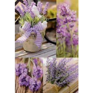 wenskaarten zonder tekst met lavendel
