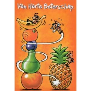 Wenskaart van harte beterschap met getekende lieveheersbeestjes rondom verschillende soorten fruit humor