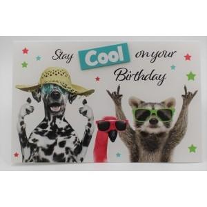 """Adios wenskaart felicitatie met de tekst """"stay cool on your birthday"""" ,et de grappige afbeeldingen van een hond, een flamingo en een wasbeer"""