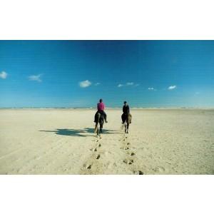 Wenskaart foto mini met de afbeelding van twee paardrijders op het strand