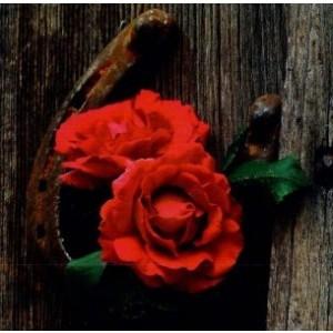 Blanco vierkant kaartje met rode rozen en een hoefijzer